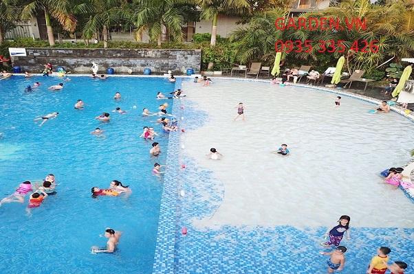 Chi phí xây dựng bể bơi kinh doanh riêng cho trẻ em và người lớn