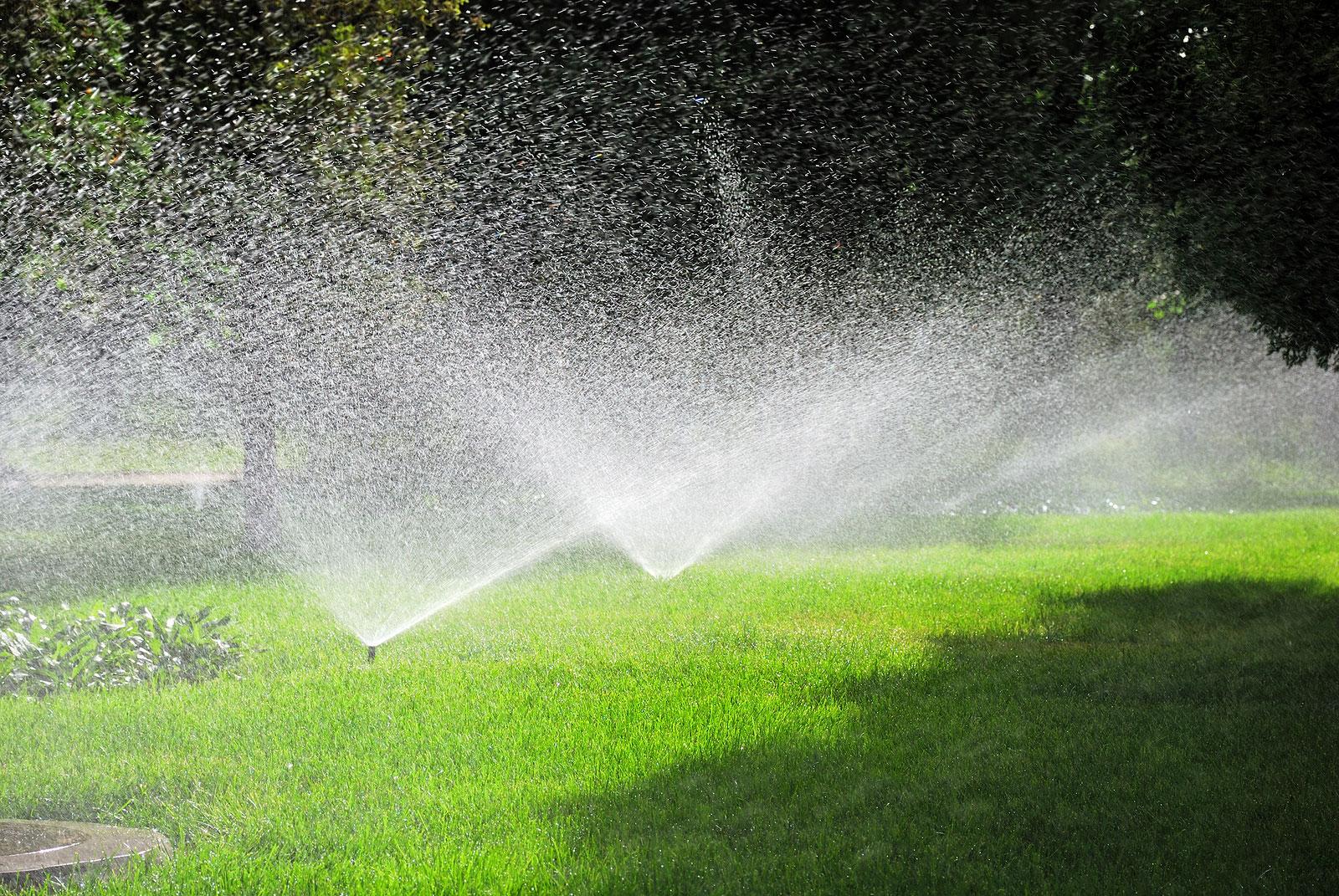 Tưới cảnh quan tự động cho mảng cỏ
