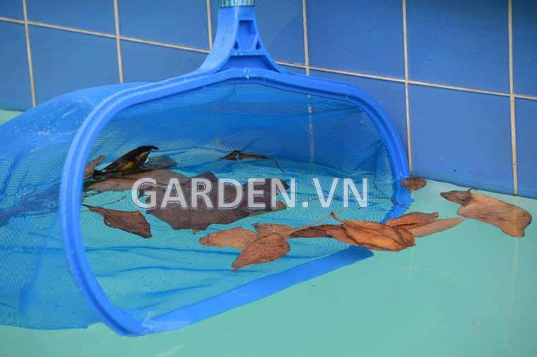 Vợt rác bể bơi Emaux